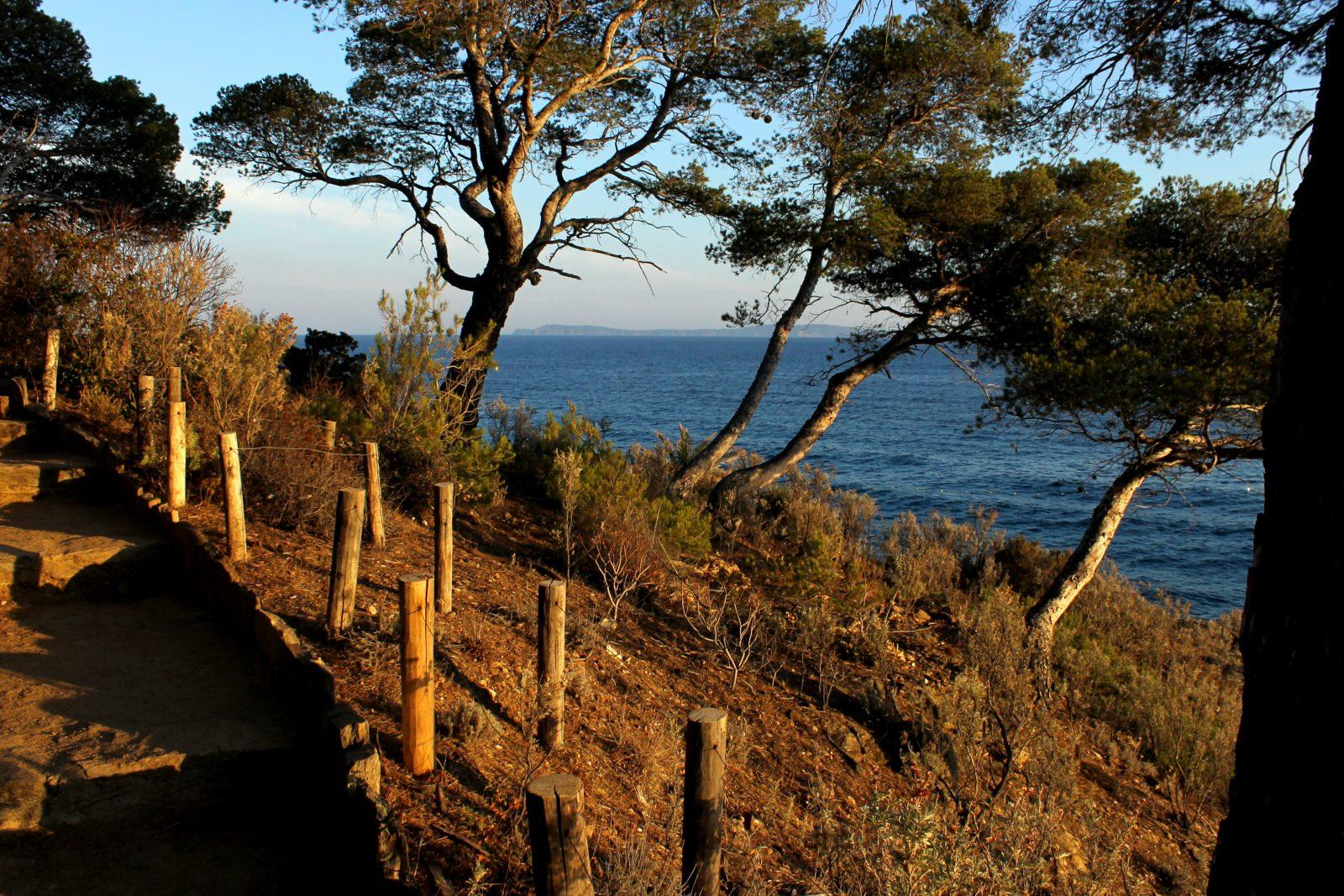 Vue depuis la Pointe du Figuier du Domaine du Rayol