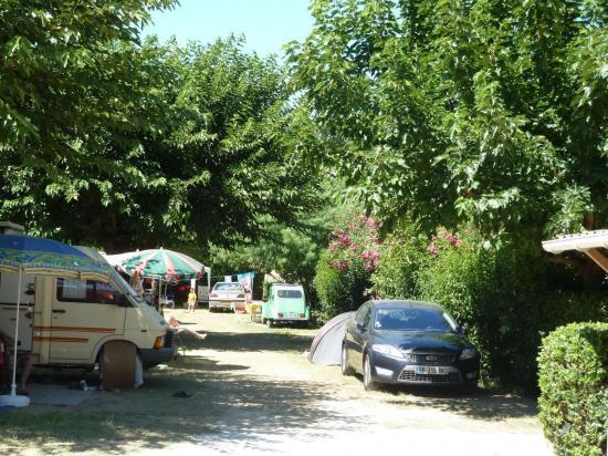 Camping les citronniers Lavandou